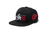 clot-x-stussy-japan-2013-year-of-the-snake-collection-4