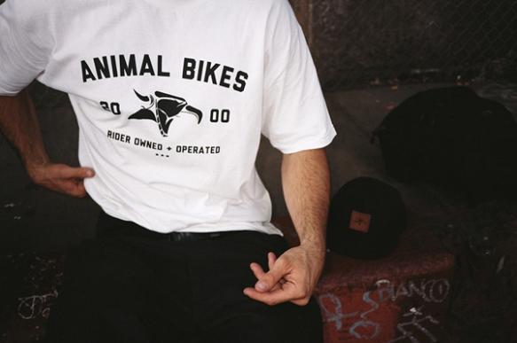 Animal_2013_BTS